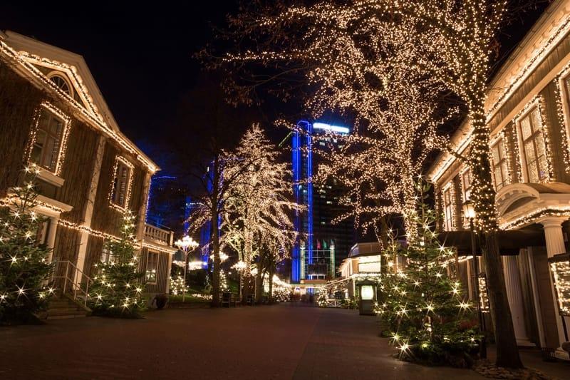 tree-light-set-63m-420-led-white-led-4